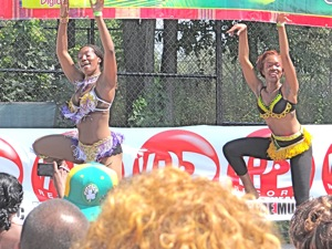 jamaican jerk festival in jamaica ny queens 2012