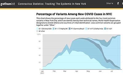 covid pandemic nyc delta variant covid in nyc brooklyn bronx staten island queens manhattan covid nyc