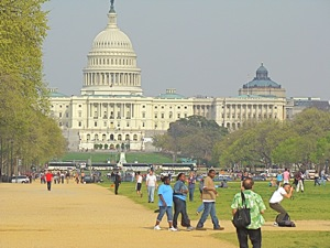 capitol washington dc photo