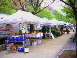 farmers markets in queens
